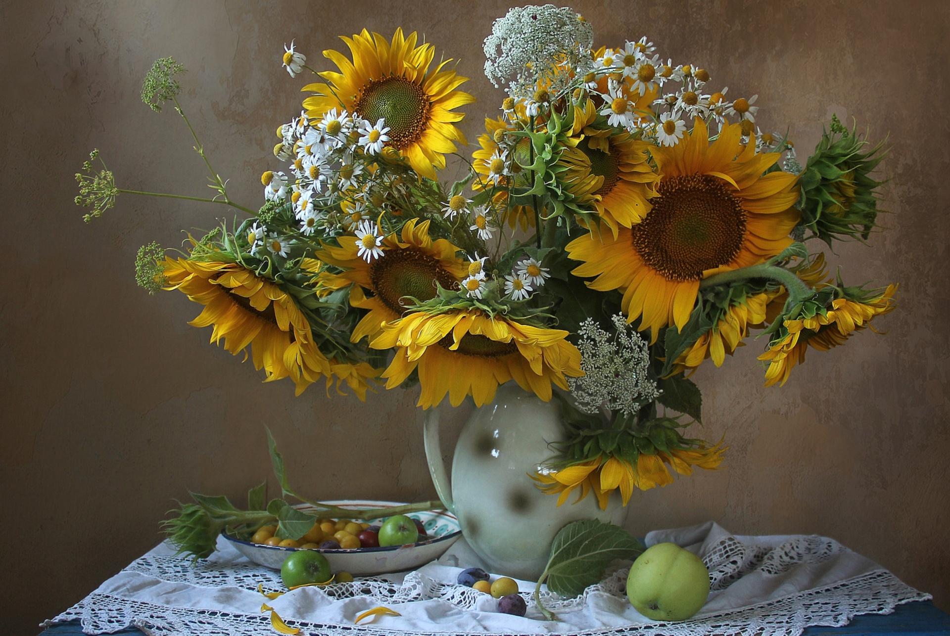 картинки полевые цветы и подсолнухи выполнит осмотр