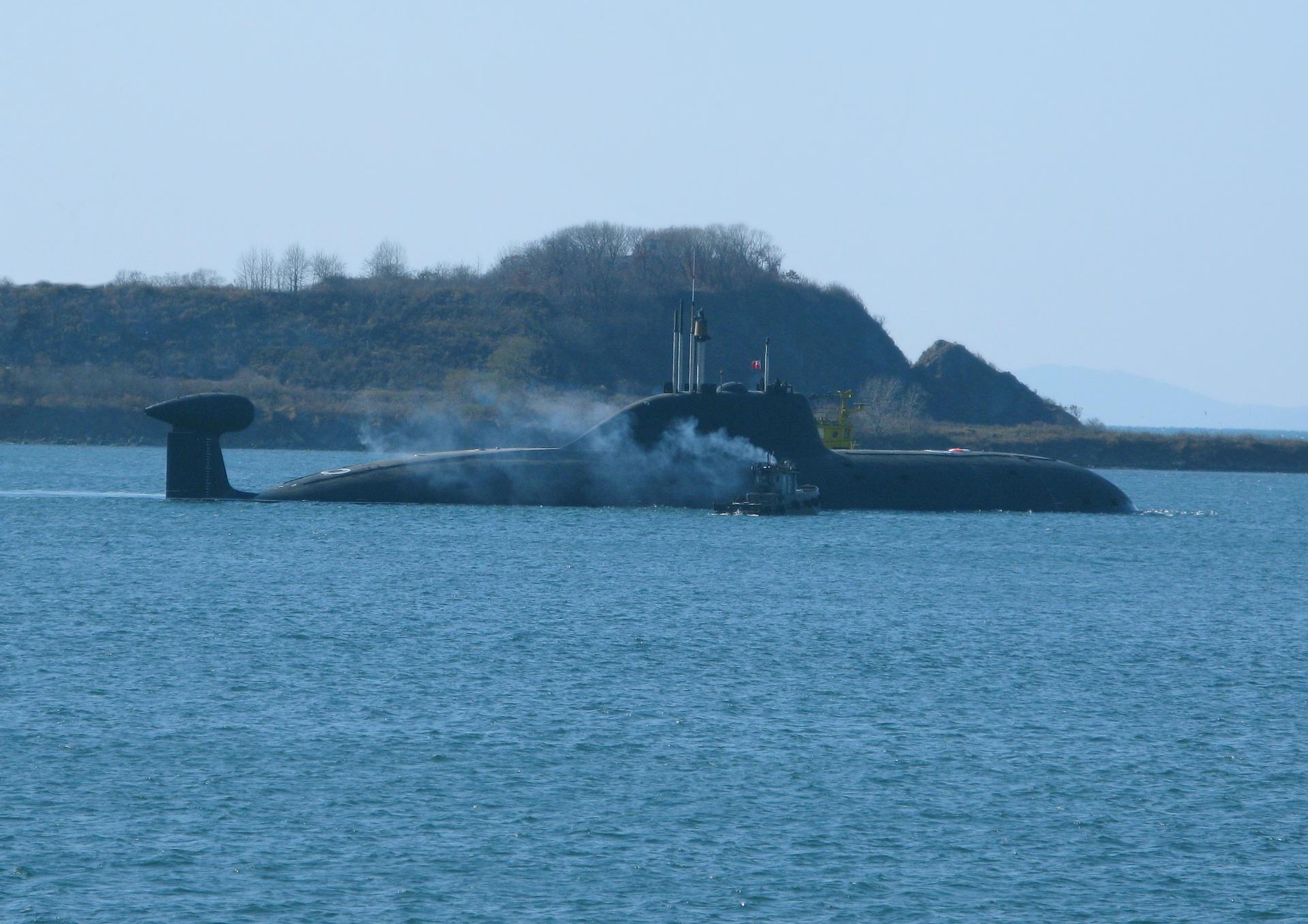 болоньезе живые нерпы на корпусах подводных лодок фото том