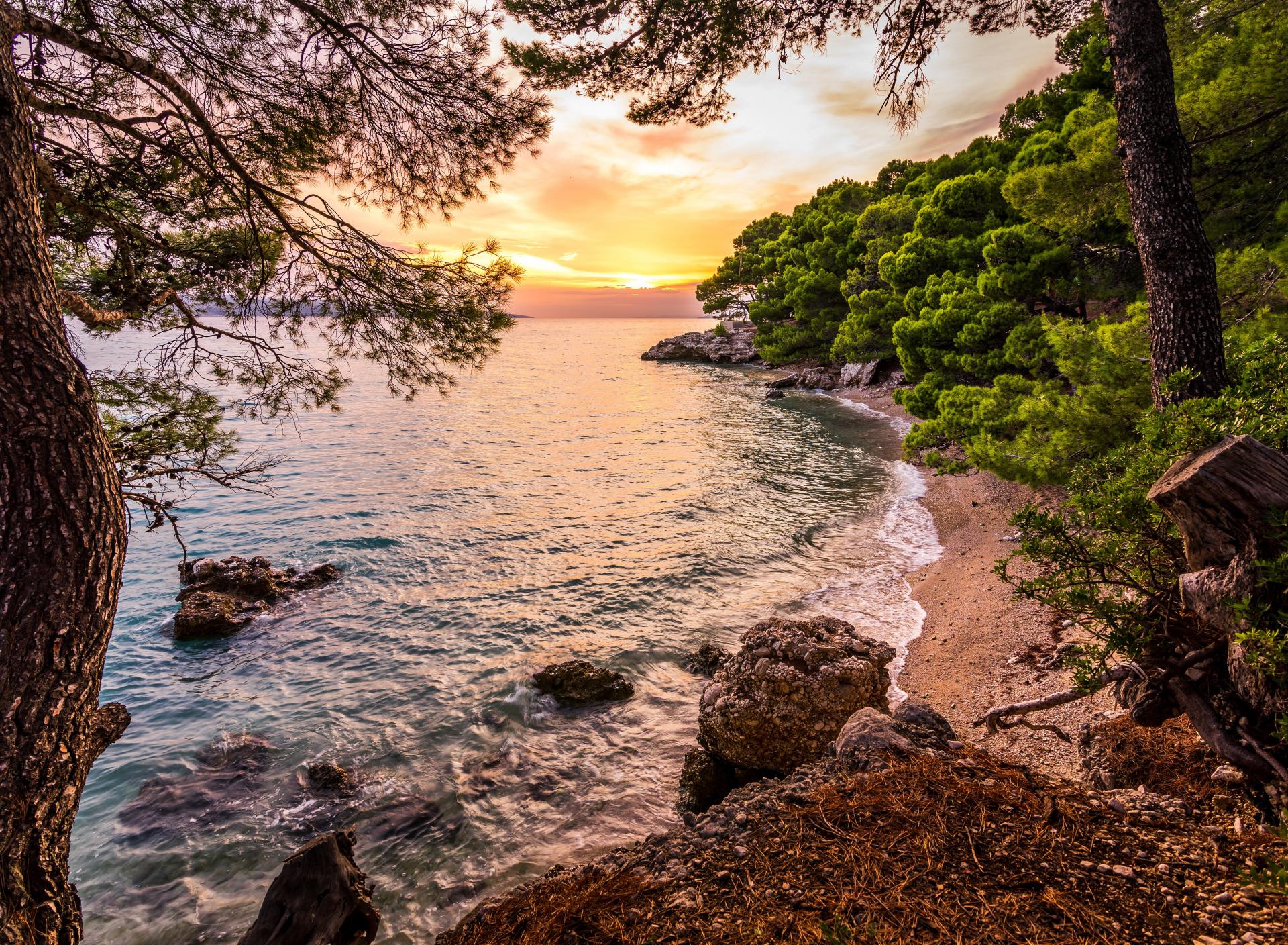Красивые картинки про лес море воздух