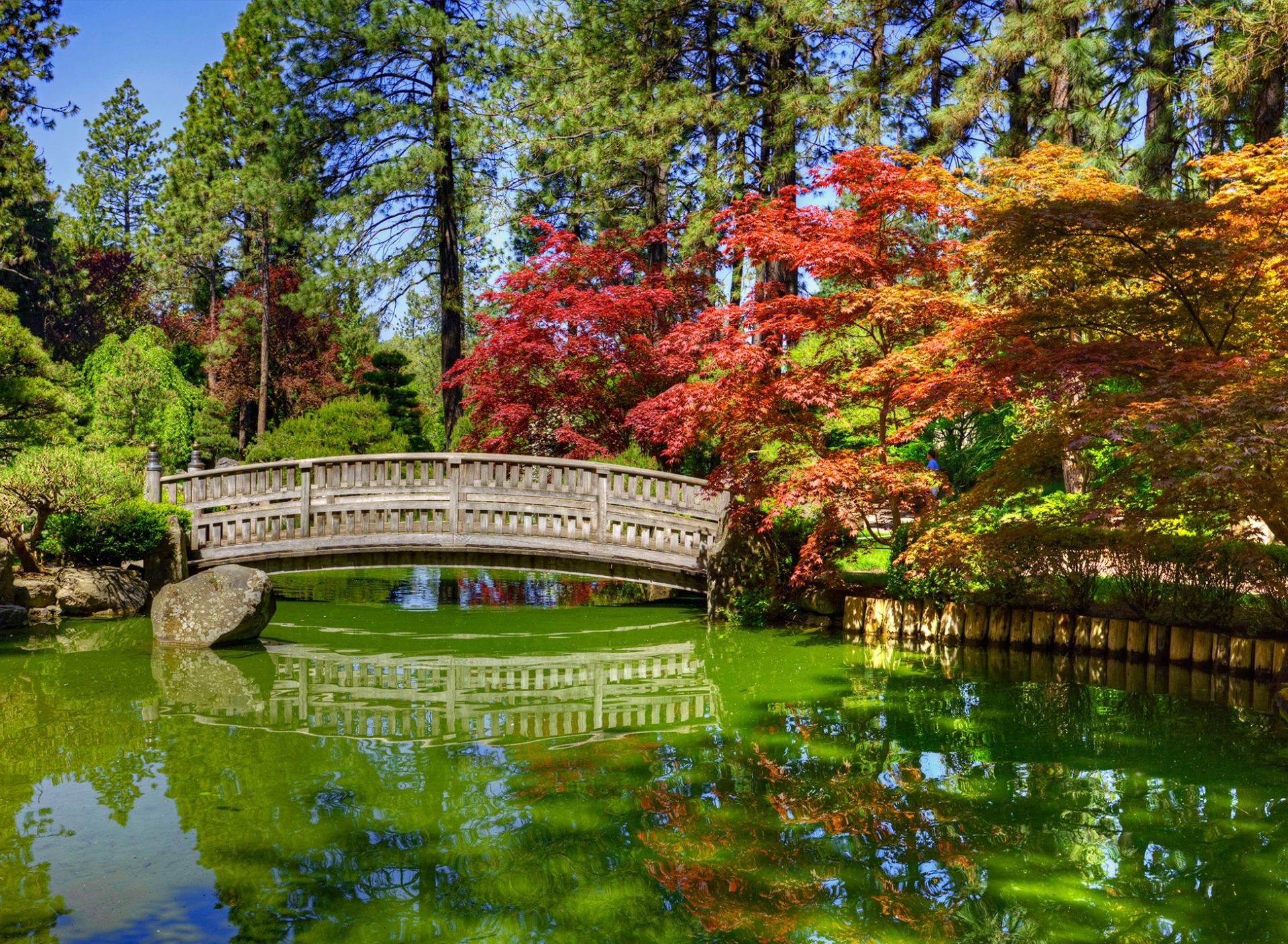 цветные фотографии красивых мостиков в парках два задних колеса