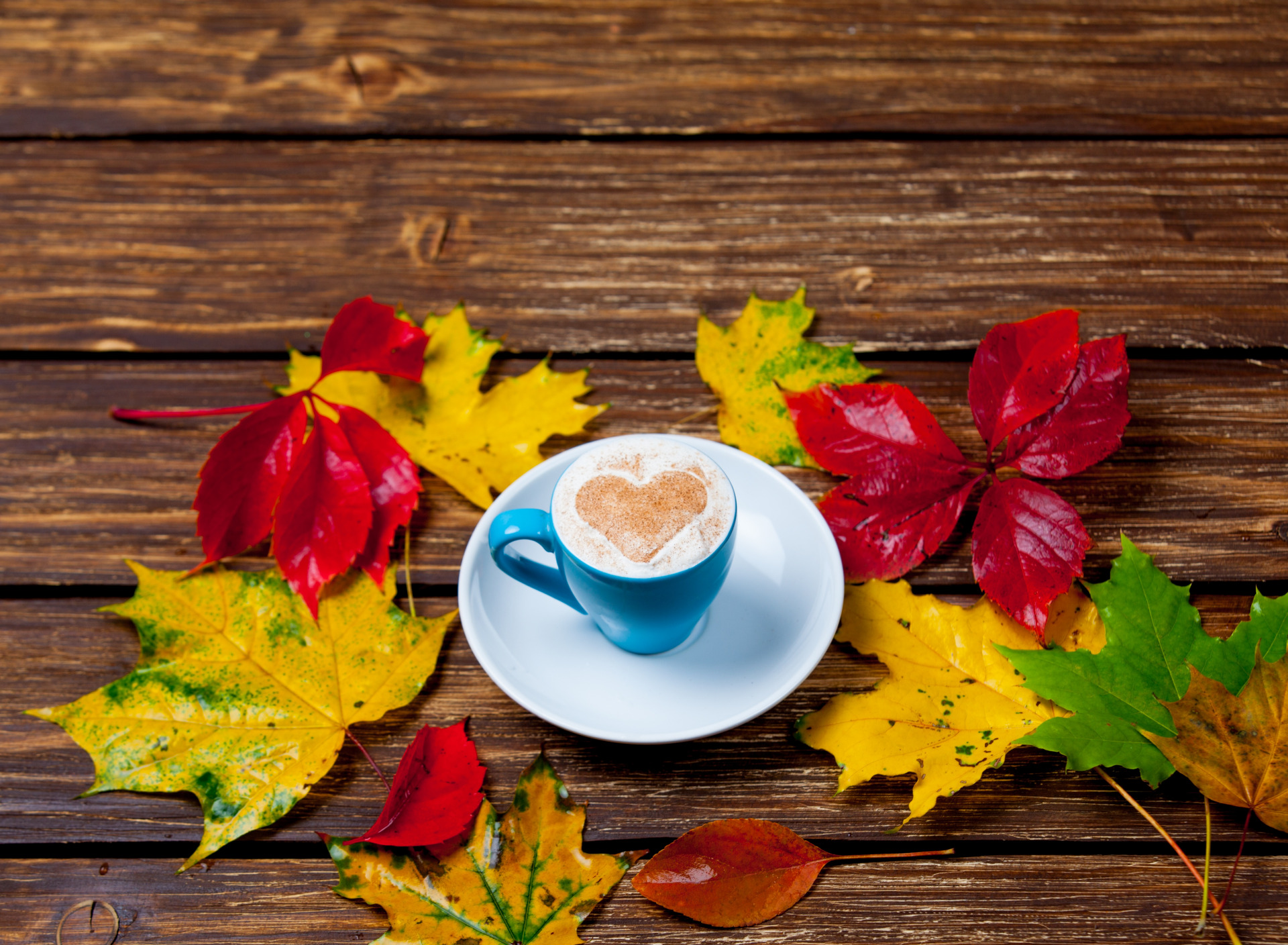картинки осень кофе листья территории расположены таун-хаусы