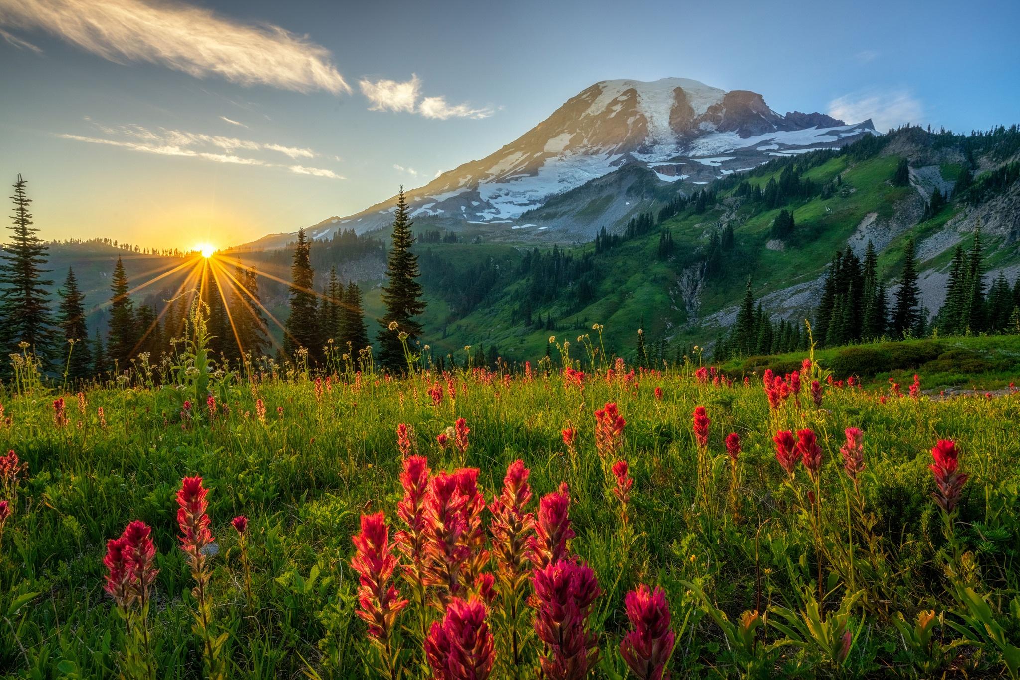 Картинки утро природа красота