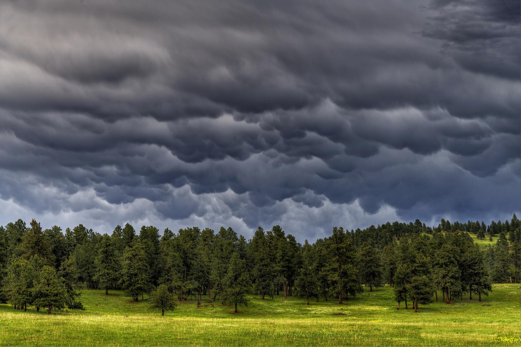 дождевое небо картинки можем быть