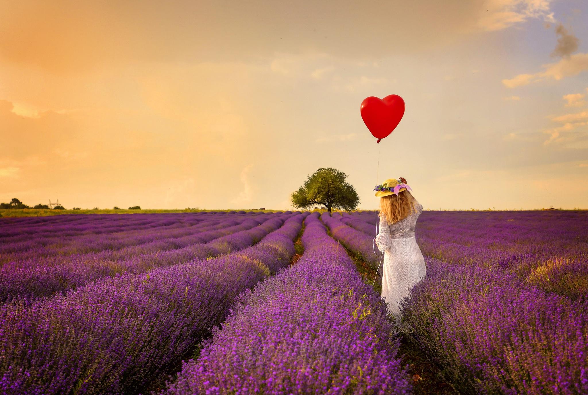 фото лаванда и воздушные шары тату роза ветров