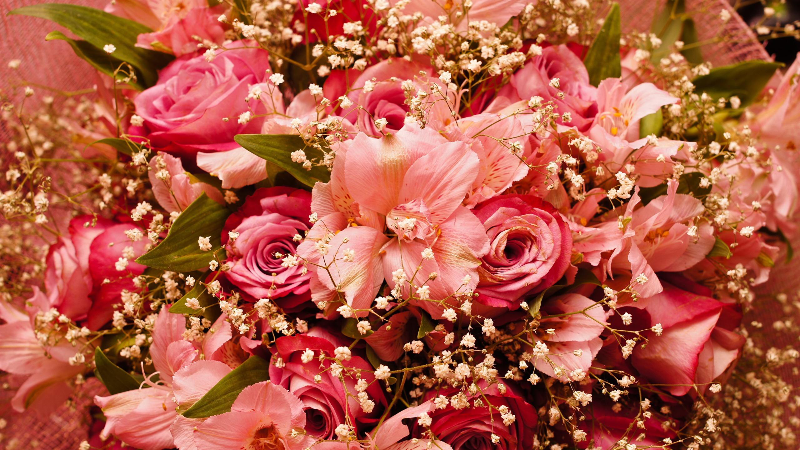 Открытки цветы смотреть онлайн