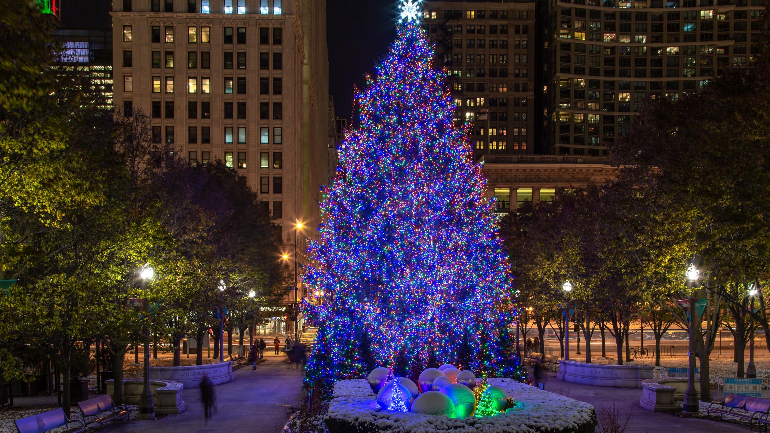 лбу фото городской новогодней елки в г мелеуз изучали описания