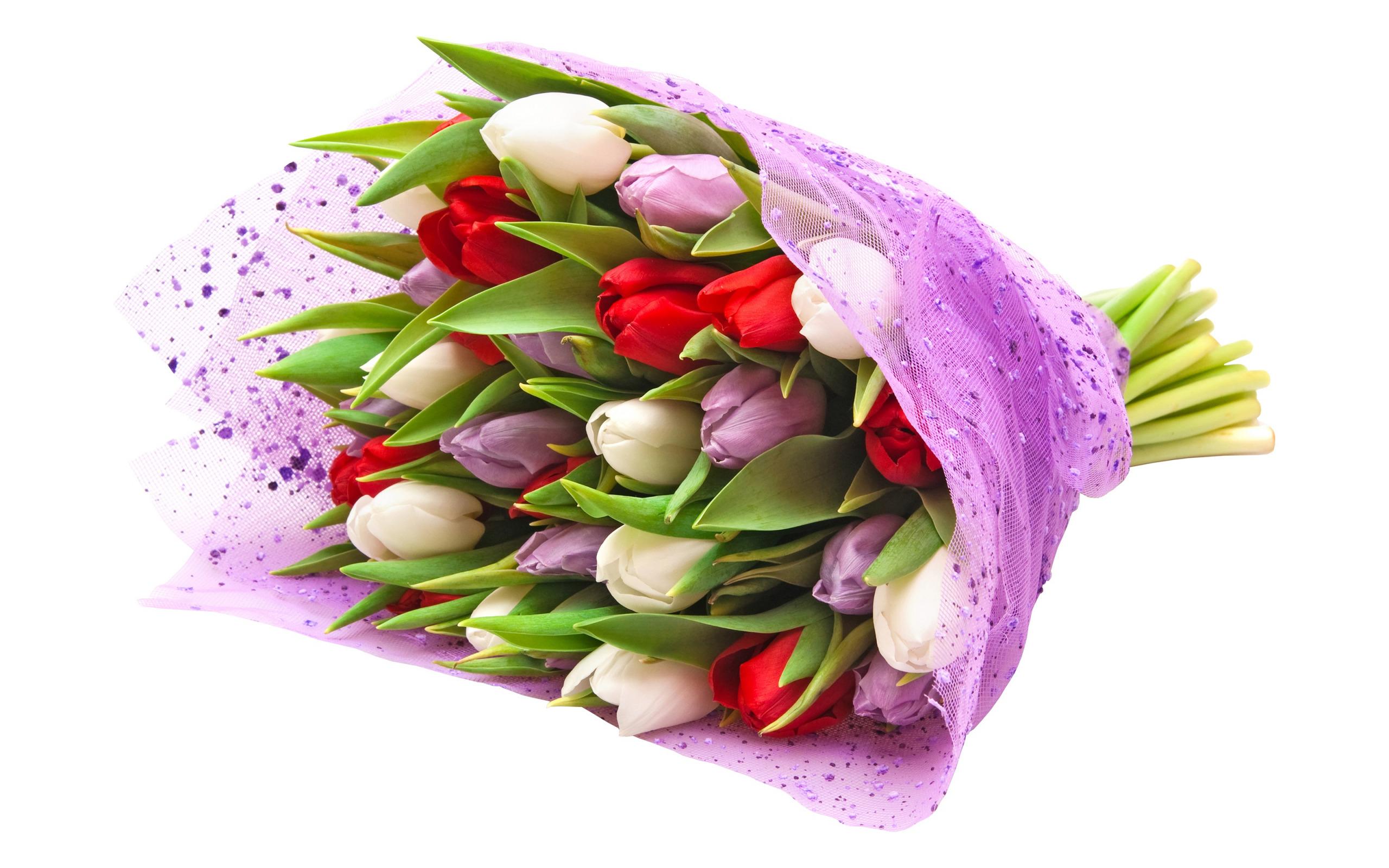 Картинки тюльпаны букет для тебя