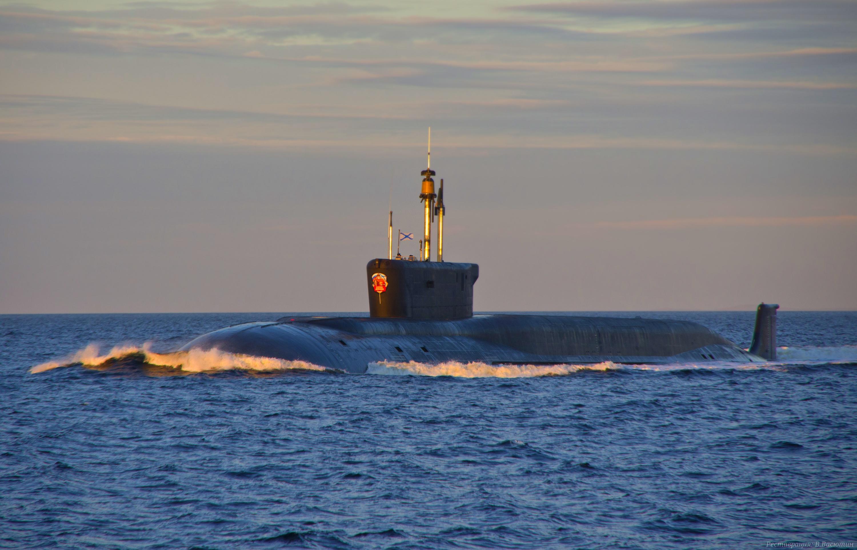 атомный подводный флот россии животные