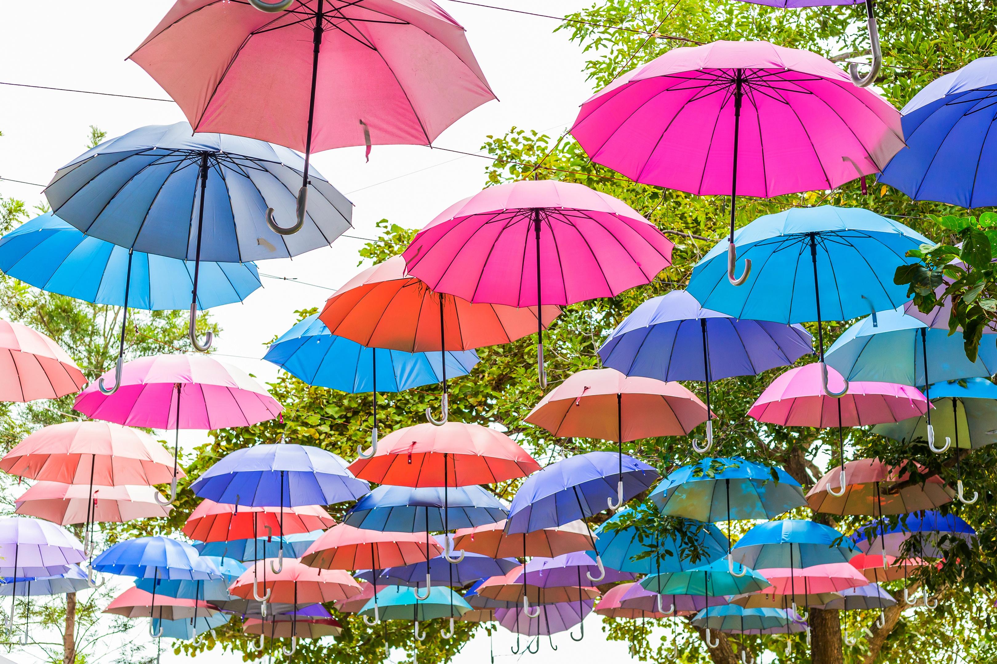 упереть картинки яркого зонтика похороны пришли только