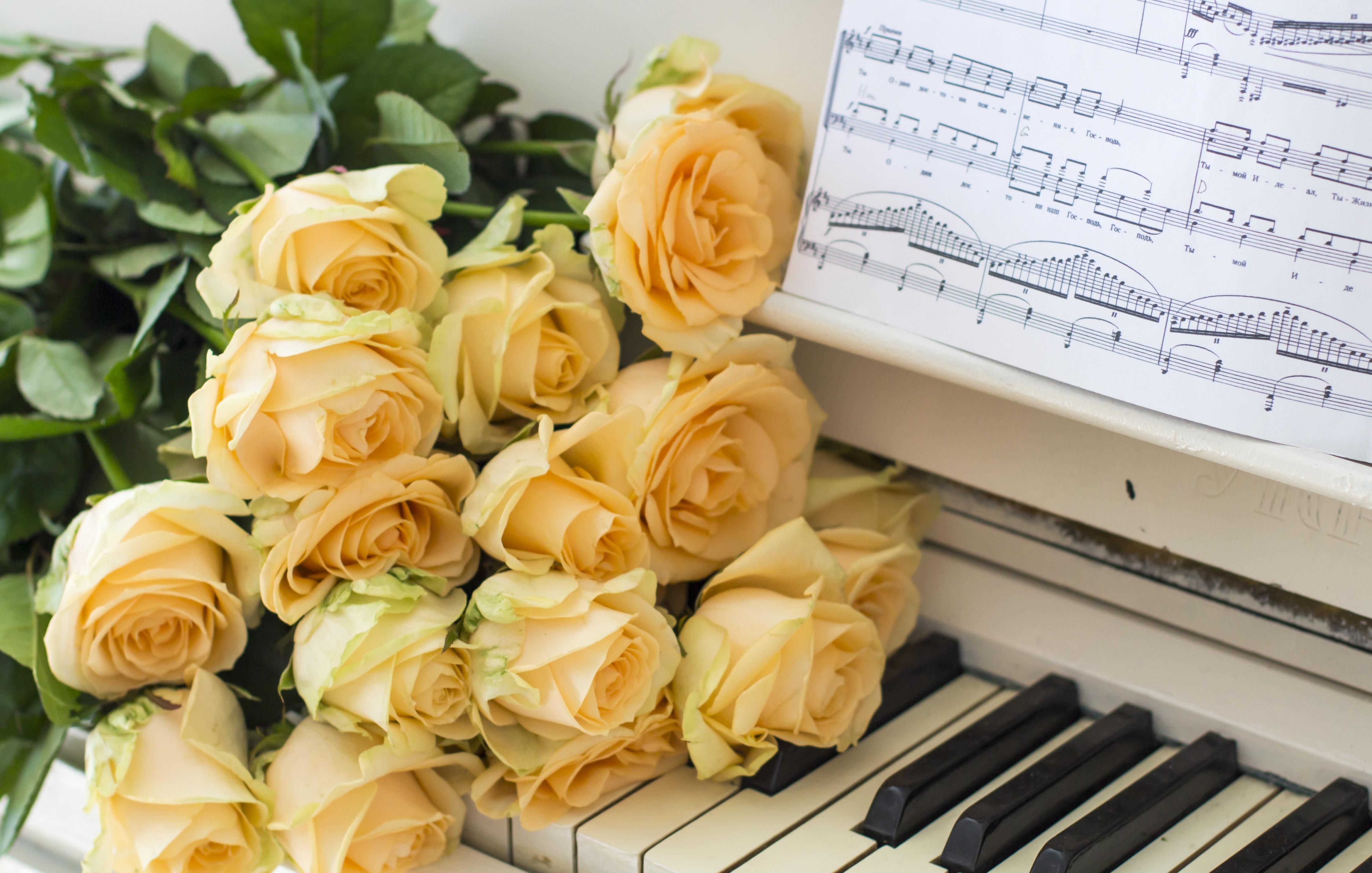 Картинки с цветами и нотами