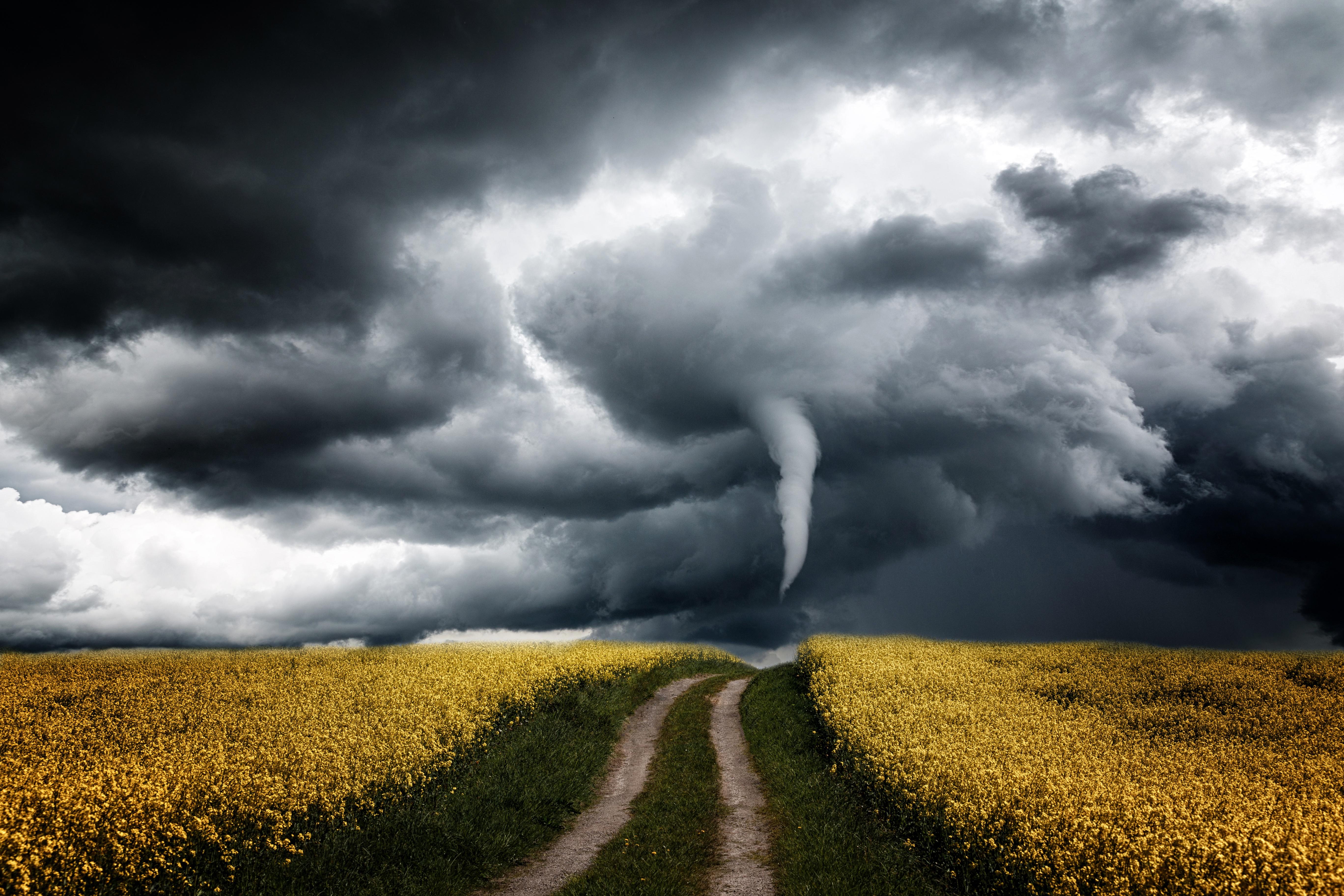 картинки ветра ураган если