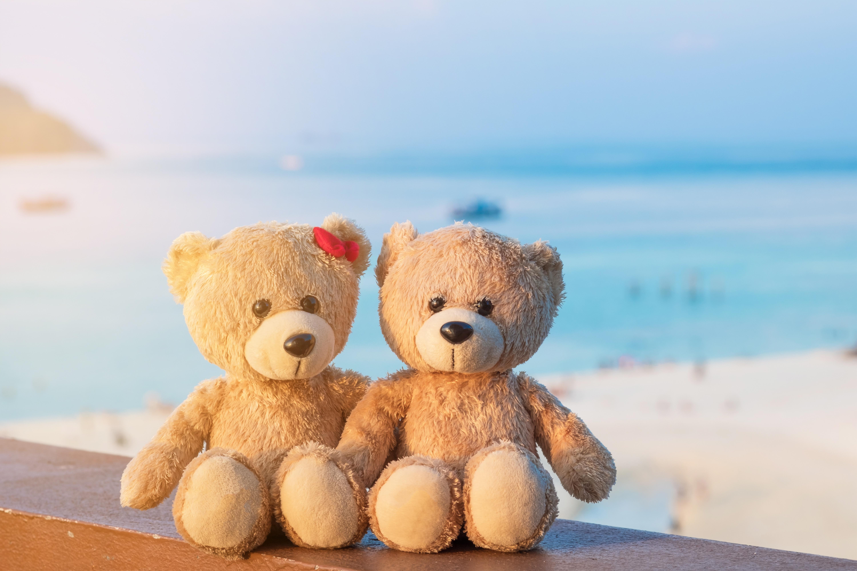 картинка игрушка на берегу моря что изображение