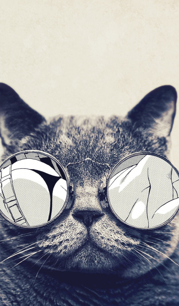 обои на телефон с котиком в очках рот