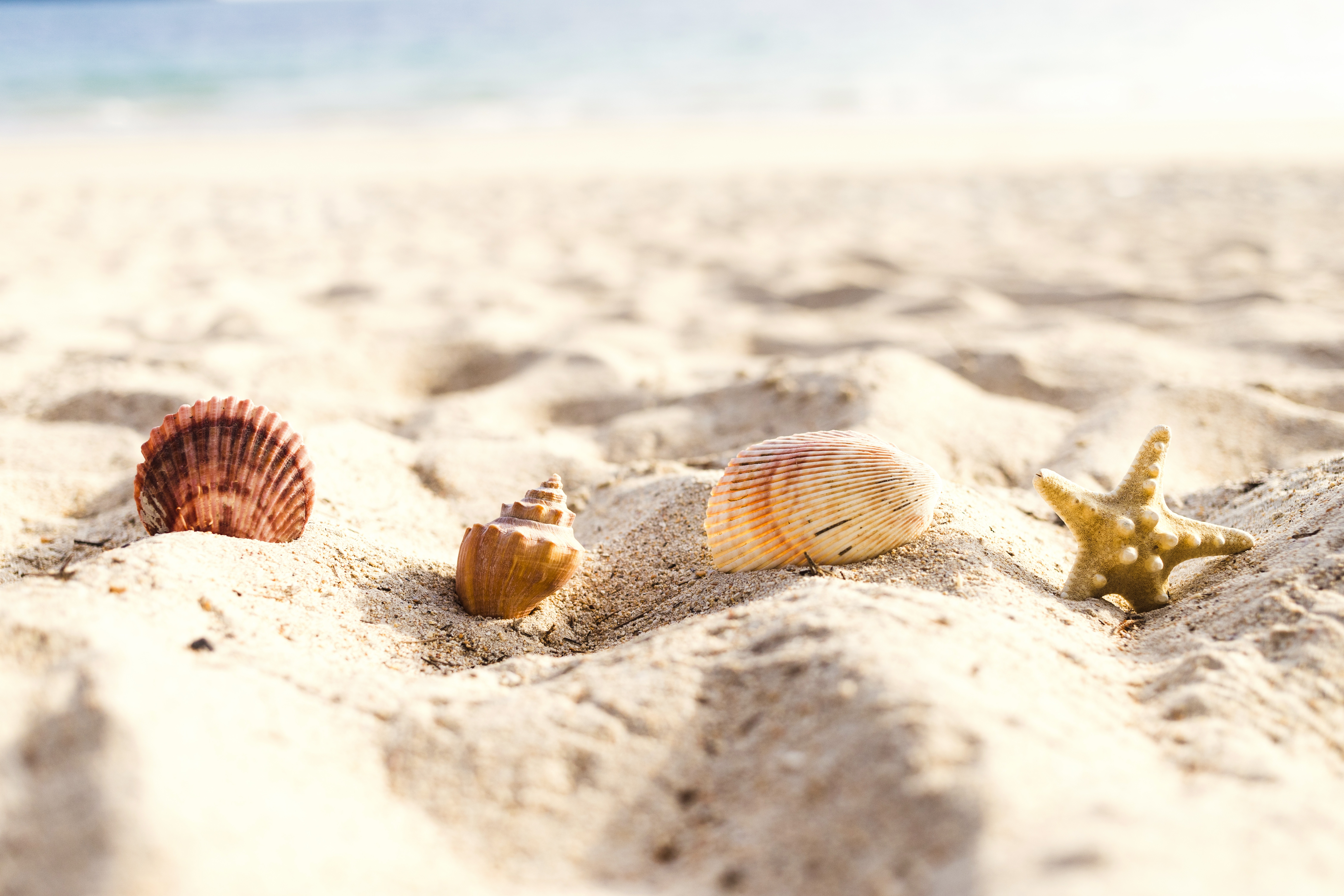 функции примерно белый морской песок фото положением женщины