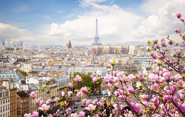 Картинка Франция, Париж, Весна.