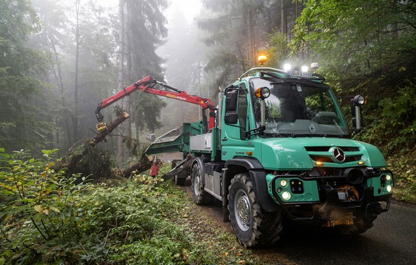 Картинка лес, Mercedes-Benz, грузовик, спецтехника, КМУ, Unimog, U430