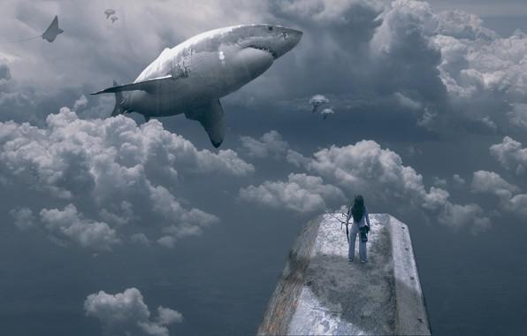Картинка девушка, облака, рыбы, акула, girl, clouds, shark, fish, Bingo Z