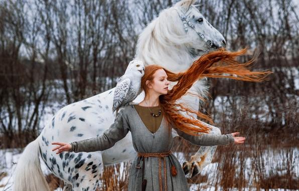 Картинка зима, девушка, поза, конь, птица, лошадь, руки, рыжая, рыжеволосая, длинные волосы, полярная сова, белая сова, …