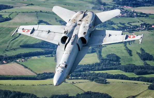 Картинка Поле, Лес, Истребитель, ВВС Швейцарии, F/A-18 Hornet, HESJA Air-Art Photography
