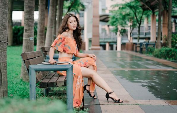Картинка взгляд, девушка, деревья, волосы, азиатка, скамья, боке