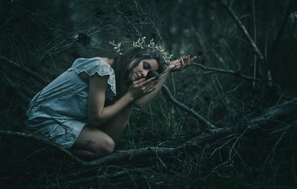 Картинка лес, девушка, ветки, поза, настроение, ситуация, руки, платье, закрытые глаза, Tímea Csürös