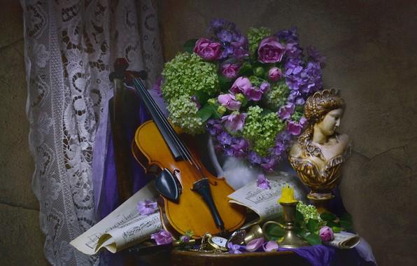 Картинка цветы, ноты, женщина, скрипка, свеча, ткань, кувшин, натюрморт, столик, бюст, гортензия, флоксы, Валентина Колова
