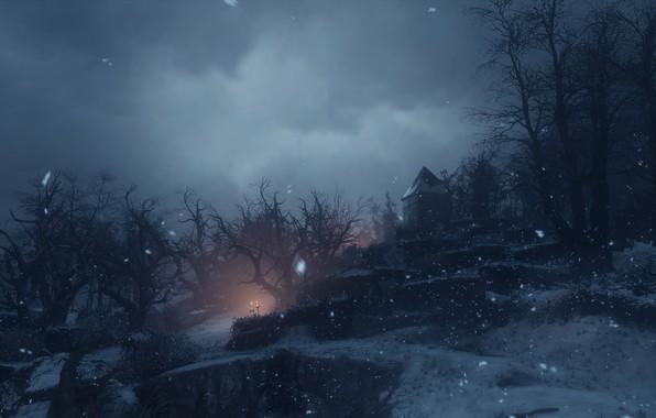 Картинка снег, ночь, a plague tale: innocence
