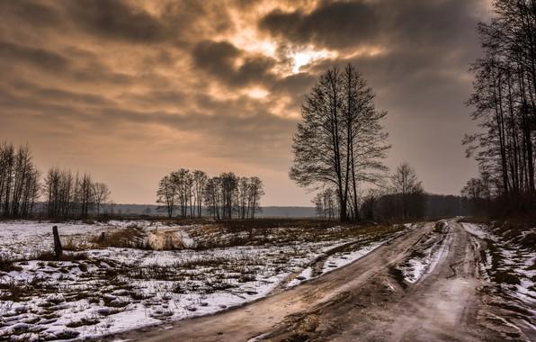 Картинка зима, дорога, поле, лес, небо, облака, снег, деревья, тучи, природа, пасмурно