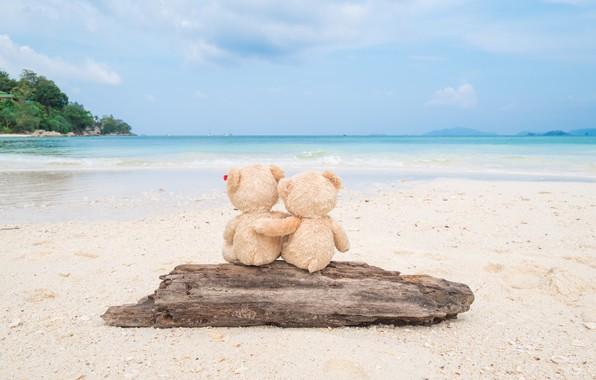 Картинка песок, море, пляж, любовь, игрушка, медведь, мишка, пара, доска, love, двое, beach, bear, sea, romantic, …