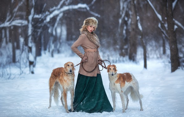 Картинка зима, собаки, девушка, снег, поза, Настя, Анастасия Бармина