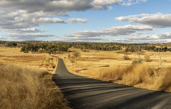 Картинка Australia, New South Wales, Rocky River