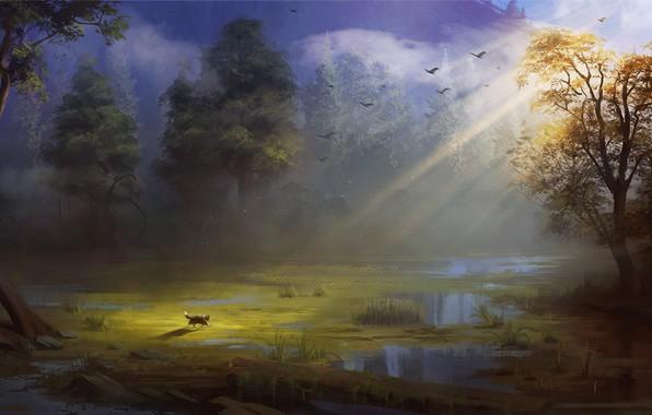 Картинка лес, кот, солнце, птицы, болото, художник, Эндрю Пальянов, путешествие кота