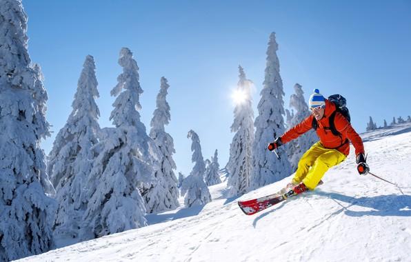 Картинка зима, небо, солнце, снег, деревья, спуск, шапка, лыжи, палки, гора, скорость, склон, очки, куртка, перчатки, …