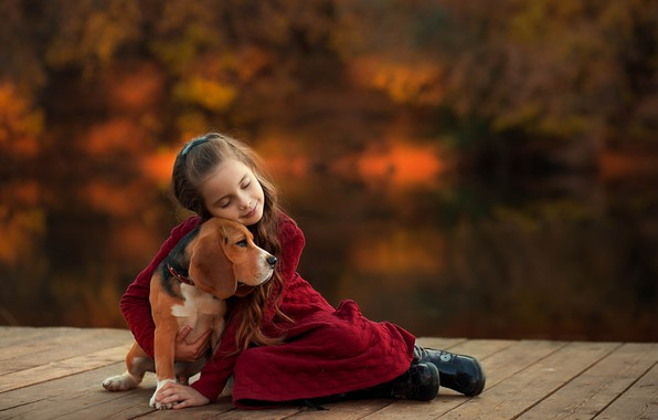 Картинка собака, дружба, девочка, друзья, боке, обнимашки, Бигль, Екатерина Борисова