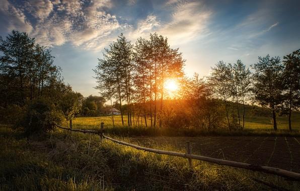 Картинка лето, закат, забор