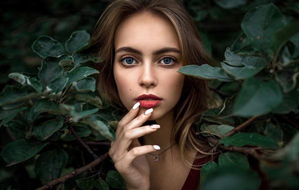 Картинка глаза, взгляд, девушка, портрет, губы, листы, Александр Куренной