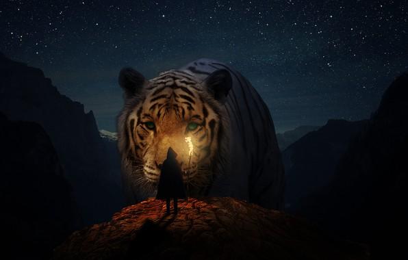 Картинка животные, кошки, природа, девушки, пейзажи, Тигр, фэнтези