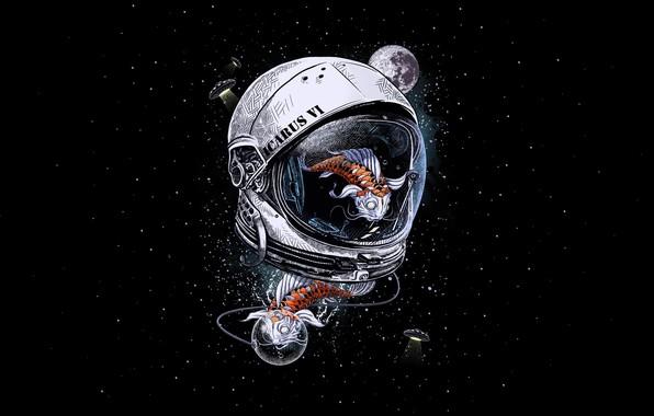 Картинка Минимализм, Звезды, Аквариум, Скафандр, Космос, Рыбка, Стиль, Fish, Рыбки, Шлем, Фон, Aquarium, Арт, Stars, Space, …