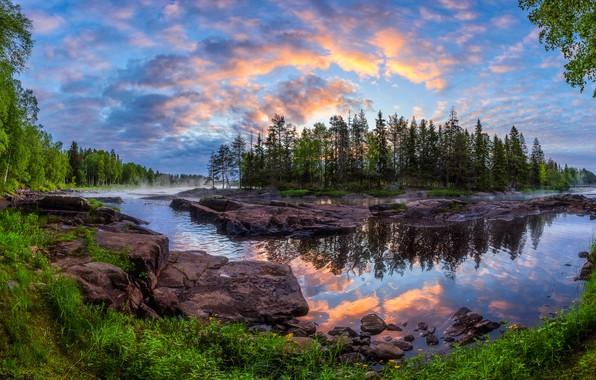 Картинка лес, деревья, отражение, река, рассвет, остров, утро, Финляндия, Finland, Kiiminkijoki River, Кийминки, Kiiminki