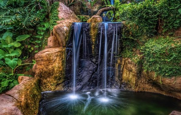 Картинка вода, скала, парк, водопад, HDR, растения, утес, nature, park, waterfalls, plants