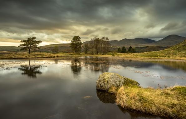 Картинка осень, лес, небо, трава, деревья, водоросли, пейзаж, горы, природа, озеро, пруд, отражение, река, камни, дерево, …