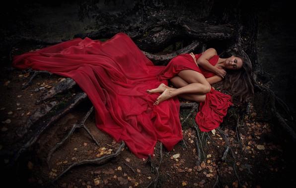 Картинка осень, девушка, поза, настроение, ноги, сон, ситуация, красное платье, спящая, корни дерева, Анна Шувалова
