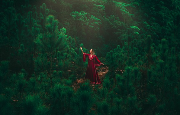 Картинка girl, forest, dress, model