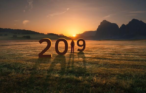 Обои солнце, поле, 2019, Новый год