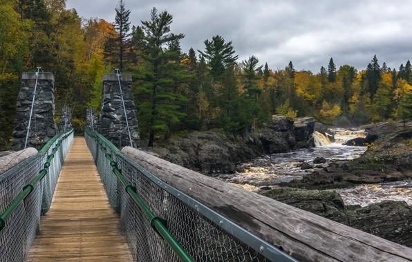 Картинка мост, река, Autumn, Jay Cooke state park