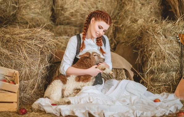 Картинка девушка, улыбка, сено, рыжая, барашек, рыжеволосая, овечка, косы, ягнёнок, Диана Липкина