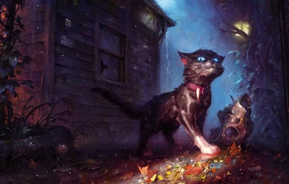 Картинка кот, дом, дождь, листва, череп, фэнтези, арт, фонарь, ошейник, непогода