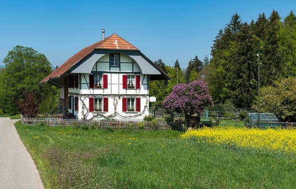 Картинка фото, Дизайн, Трава, Забор, Швейцария, Дом, Особняк, Steinhof
