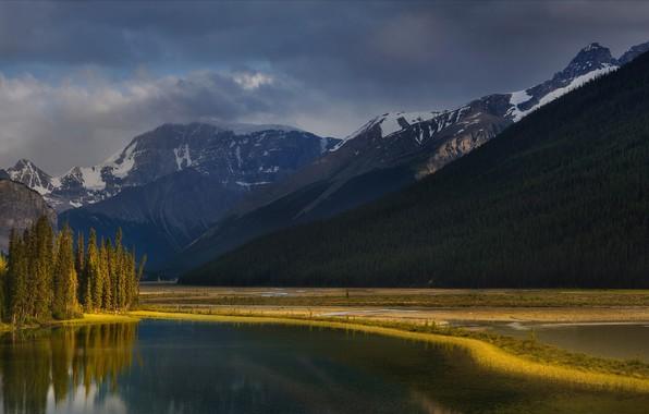 Картинка облака, деревья, пейзаж, горы, тучи, природа, озеро, берег, ели, леса