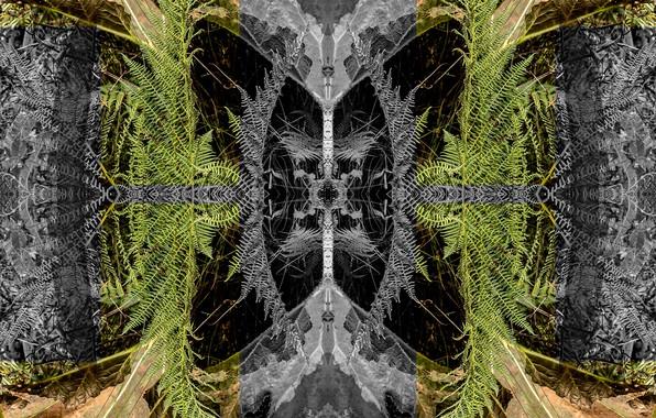 Картинка отражение, хаос, симметрия, усор